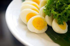 Sliced boiled egg on white plate. Sliced boiled egg on a white plate Royalty Free Stock Images
