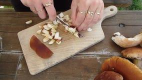 Sliced boletus - slicing mushrooms, stock footage