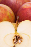 Sliced boskoop apple Royalty Free Stock Images