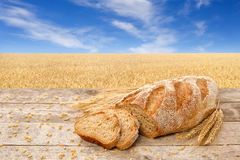 Sliced bread on the field background Royalty Free Stock Photo