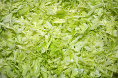 Sliced cabbage Royalty Free Stock Photography