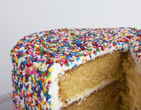 A sliced cake with sprinkles Stock Photo