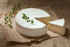 Sliced camembert cheese, creamy round traditional Royalty Free Stock Photo