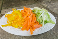 Sliced carrots celery and peppers on a plate. Stock Images
