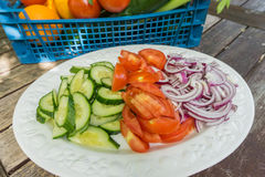 Sliced carrots celery and peppers on a plate. Royalty Free Stock Photo