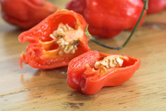 Sliced cayenne pepper Royalty Free Stock Images