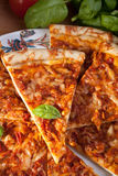 Sliced cheese margerita pizza Stock Images