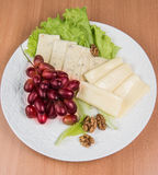Sliced cheese salad and grapes walnut Stock Image
