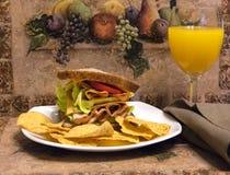Sliced Chicken breast sandwich with OJ stock image