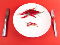 Sliced chili on plate (full view, serie) Royalty Free Stock Images