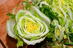 Sliced Chinese Cabbage Stock Images