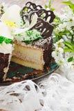 Sliced chocolate cake Stock Photos