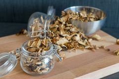 Sliced, chopped and dried various mushrooms in preserving glass Stock Photography