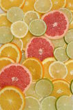 Sliced citrus fruit Stock Images