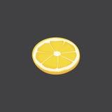 Sliced citrus fruit lemon. Vresh piece of  vector Royalty Free Stock Photography