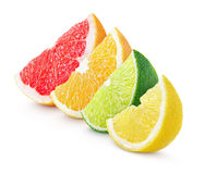 Sliced citrus fruit - lime, lemon, orange and grapefruit Royalty Free Stock Photo