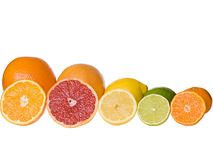 Sliced citrus fruits Stock Images