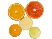 Sliced citrus fruits Stock Photos