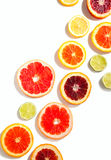 Sliced citrus fruits background Royalty Free Stock Images