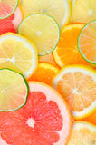 Sliced citrus fruits background Stock Photo