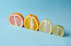 Sliced citrus fruits on a blue surface background stock photo