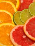 Sliced citrus fruits Royalty Free Stock Photos