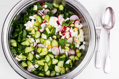 Sliced cucumber, radish, onion, spinach, lettuce and egg in meta. L bowl. Studio Photor Stock Photo