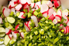 Sliced cucumber, radishes and green onions in a salad. Salad of fresh organic radish and cucumber with dill and green onions in white bowl Royalty Free Stock Image