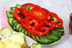 Sliced cucumber and red pepper. Fresh sliced cucumber and red pepper Stock Photos