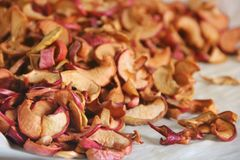 Sliced dried apples. Drying. Dried Apple Background stock photos