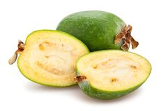 Feijoa royalty free stock images