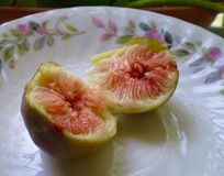 Fig on a plate Royalty Free Stock Image