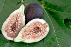 Sliced Figs with Water Drops Stock Image