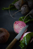 Sliced through fresh baby beetroot Stock Photography