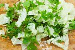 Sliced fresh  lettuce Coriander on wooden board Stock Photos