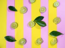 Sliced fresh lime on pastel pink and yellow stripe background, s stock photography
