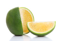 Sliced Fresh ripe lime Royalty Free Stock Photo