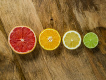 Sliced fruit in a row. Photo of a lime, lemon, orange, and grapefruit, cut and arranged in a row Royalty Free Stock Images