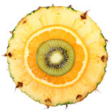 Sliced Fruits isolated. Kiwi, Pineapple, Orange. Macro. Royalty Free Stock Photos