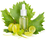 Sliced grape and grapeseed oil Stock Images