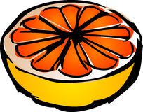 Sliced grapefruit. Sliced pink grapefruit illustration, 3d isometric style lineart sketch hand-drawn stock illustration