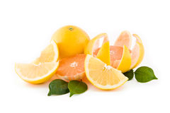 Sliced grapefruits Royalty Free Stock Photo