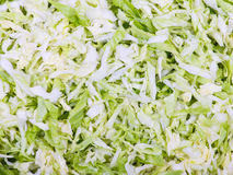 Sliced green cabbage Royalty Free Stock Image