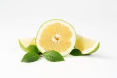 Sliced green grapefruit Stock Photo