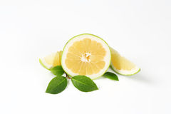 Sliced green grapefruit Stock Image