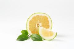 Sliced green grapefruit Stock Photos