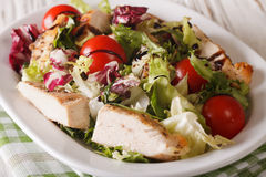 Sliced grilled chicken with mixed salad and tomatoes close-up. h Stock Photo