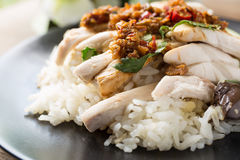 Sliced Hainan-style chicken with marinated rice Royalty Free Stock Photos