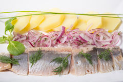 Sliced herring snack Royalty Free Stock Photography