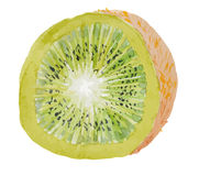 Sliced juicy kiwi on white backgroung - vector watercolor painting Royalty Free Stock Image